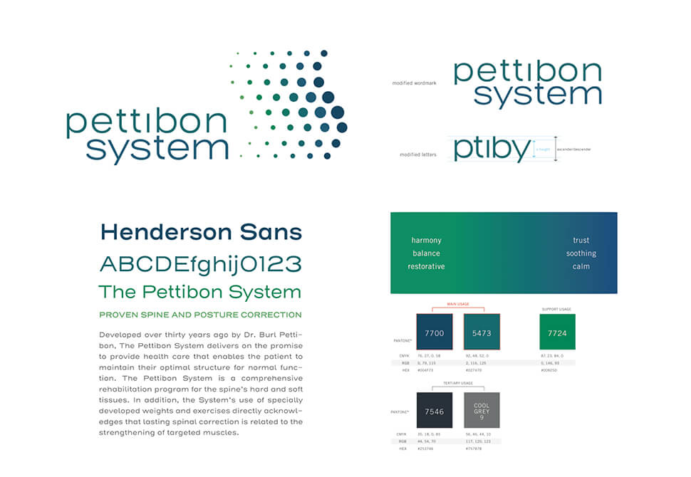 Pettibon Systems  project