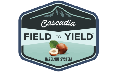 Cascadia Field-to-Yield  project