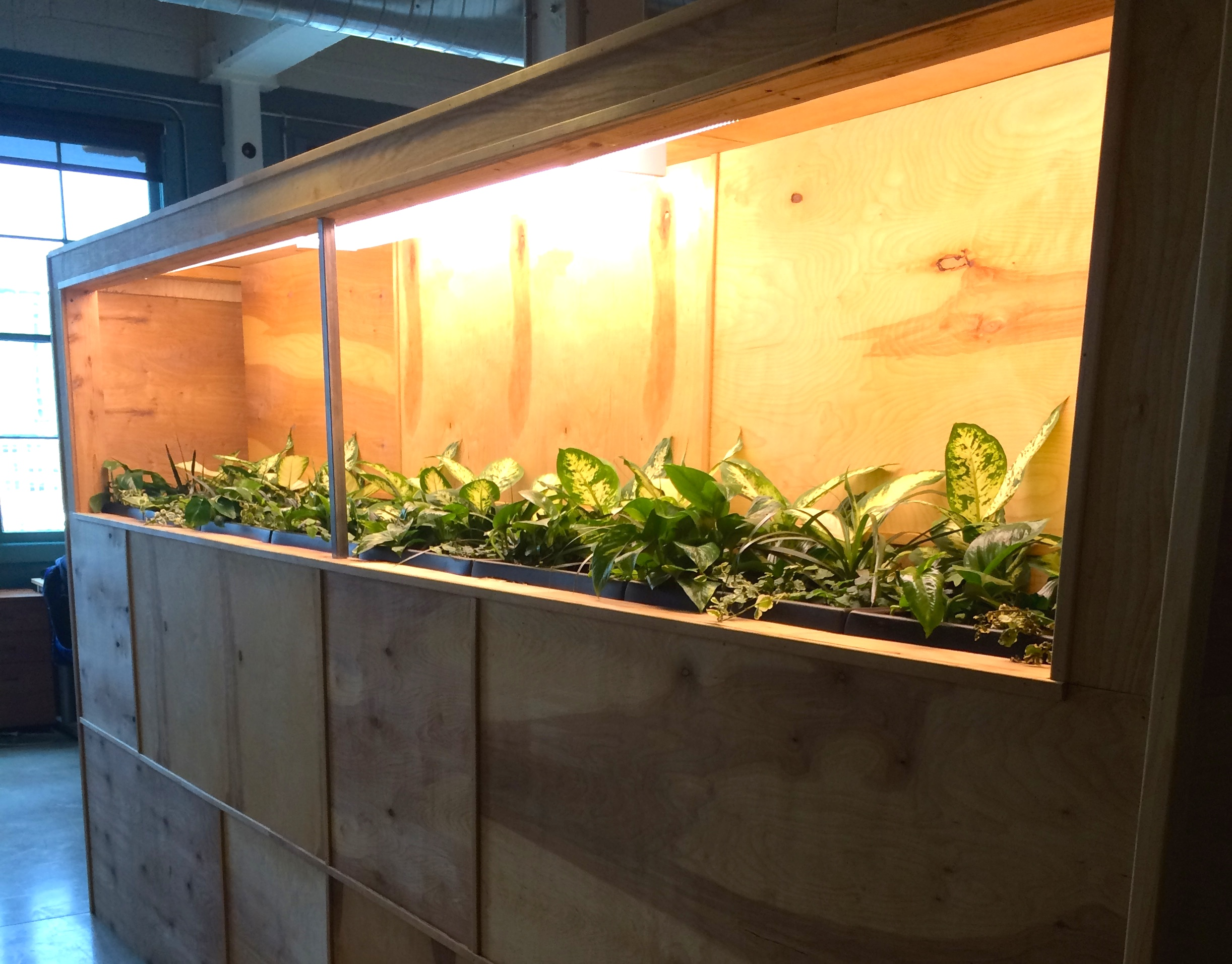 Plant Living Wall at Fish Marketing